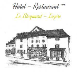 Wifi : Logo Hotel la Remise