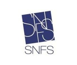 Wifi : Logo Snfs