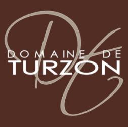 Wifi : Logo Domaine de Turzon