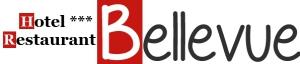 Wifi : Logo Le Bellevue