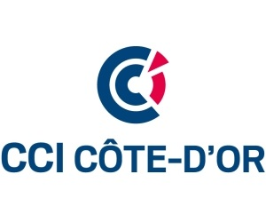 Wifi : Logo Cci Cote-D'Or