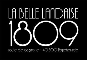Wifi : Logo La Belle Landaise 1809