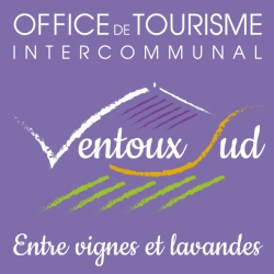 Wifi : Logo Office de Tourisme de Sault