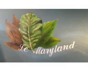 Wifi : Logo Le Maryland