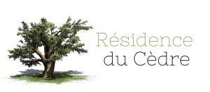 Wifi : Logo Résidence du Cédre